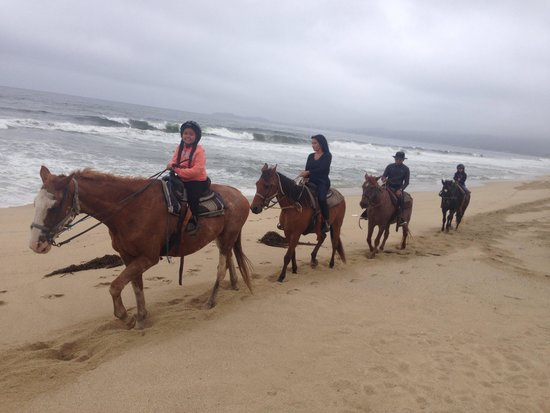 13. Half Moon Bay: Horseback Riding
