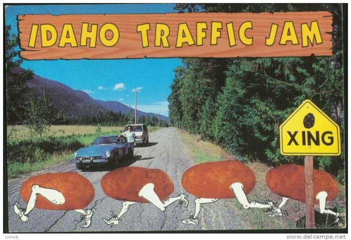 10. That's because this is how the world sees Idaho.