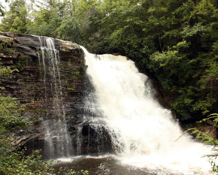 1. Muddy Creek Falls & Swallow Falls