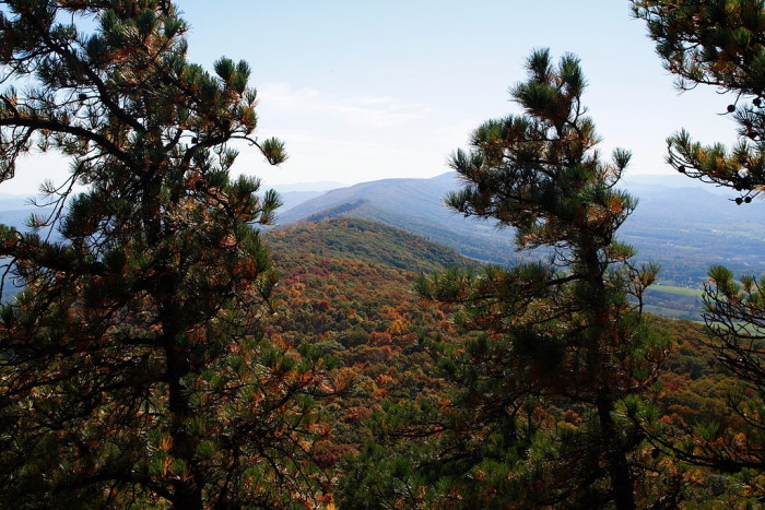 3. The Beautiful North Fork Mountain trail mountain view.
