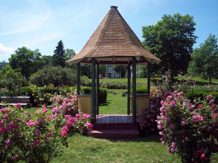 11. Maplewood Rose Garden, Rochester