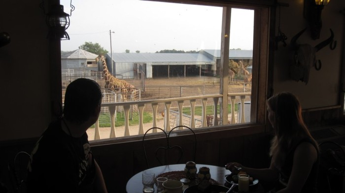 5. Hedrick's Exotic Animal Farm and Bed & Breakfast Inn (Nickerson)