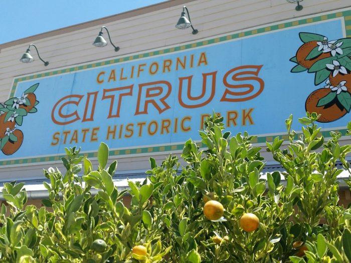 8. California Citrus State Historic Park -- Riverside