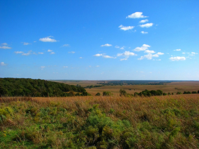 2. Walk among nature in Tallgrass Prairie Preserve in Osage County.