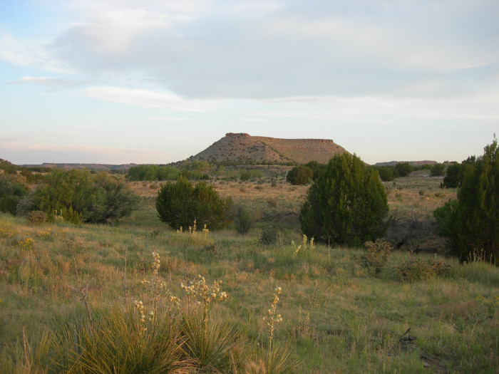 13. Walk the trails of Black Mesa State Park.