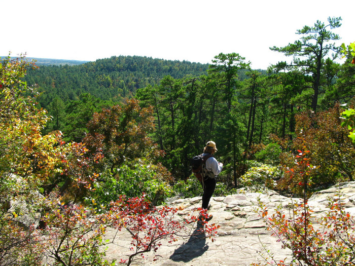 1. Hike the trails or caves at Robbers Cave State Park.