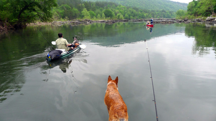 11 best fishing spots in oklahoma