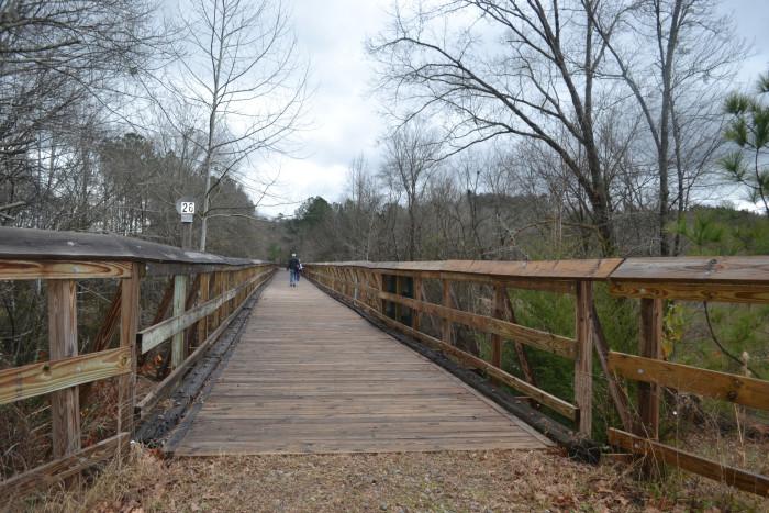 8. The Palmetto Trail