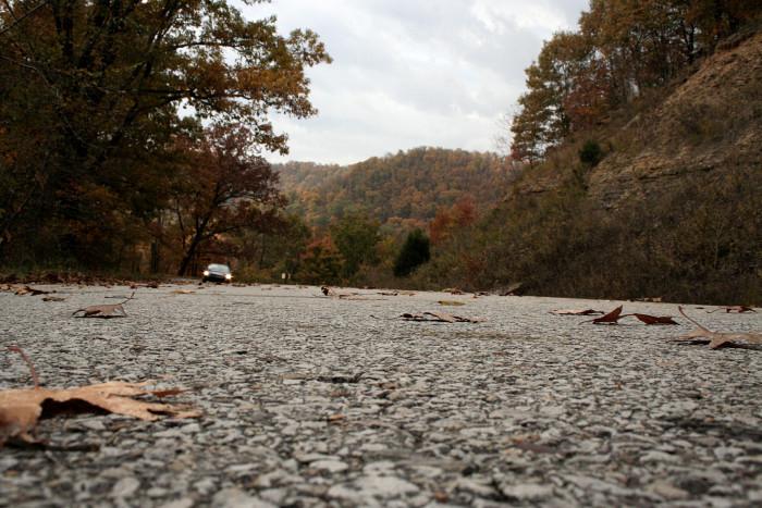1. Travel Arkansas Highway 23 - the Pig Trail.