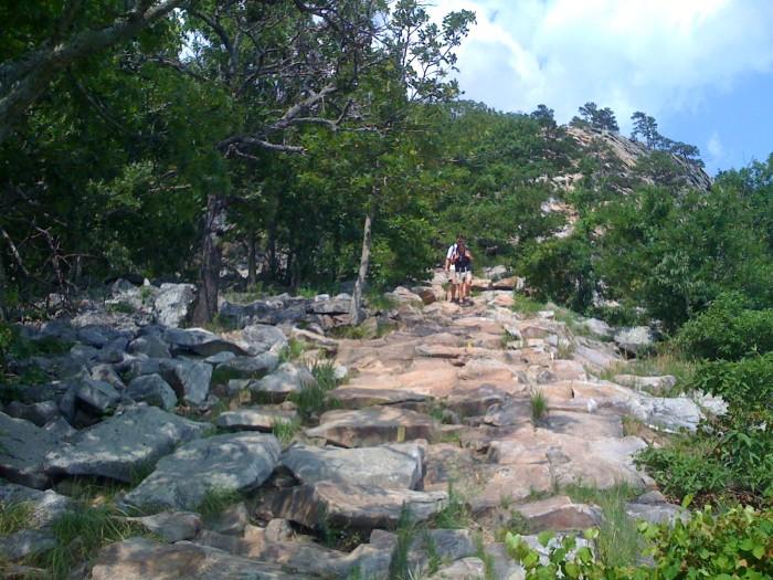 2. Reach the summit of Pinnacle Mountain.