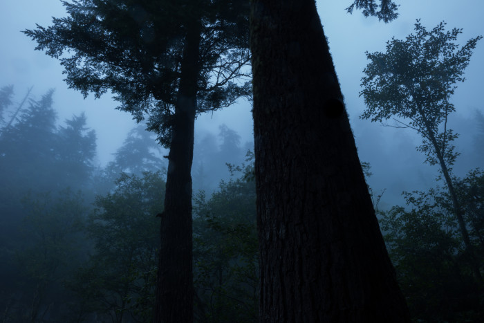 Conversely, if you do believe in ghosts, then on rainy or foggy nights you'll definitely want to put this route on your priority list for a real possibility of having a ghostly experience.