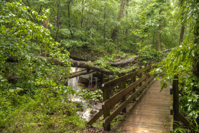 6. Camp or hike at a state park