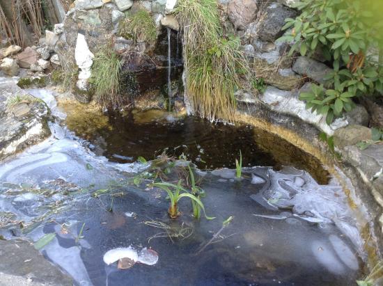 2. Stewart Mineral Springs