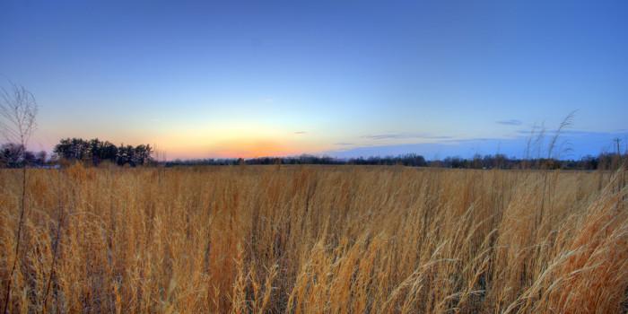 1. Sunsets