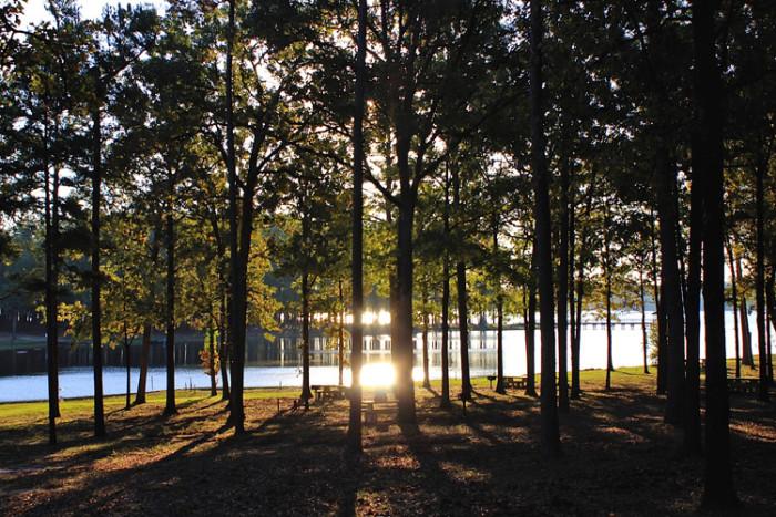 4. Cypress Black Bayou, Benton, LA