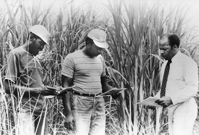 7. Voter Education Project executive director, John Lewis  encourages African American cane workers in southern Louisiana to register and vote.