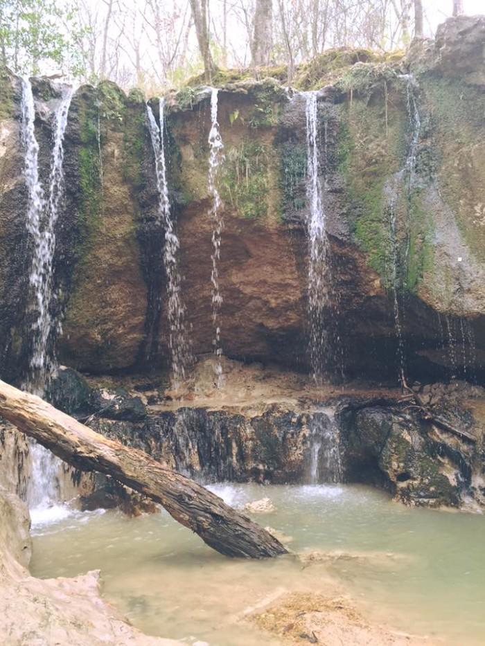 2) Tunica Hills WMA