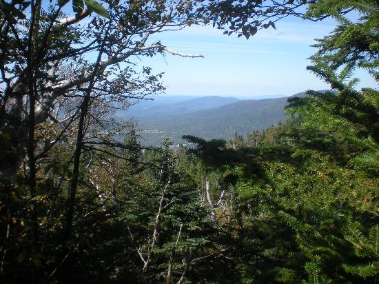 view-along-the-trail