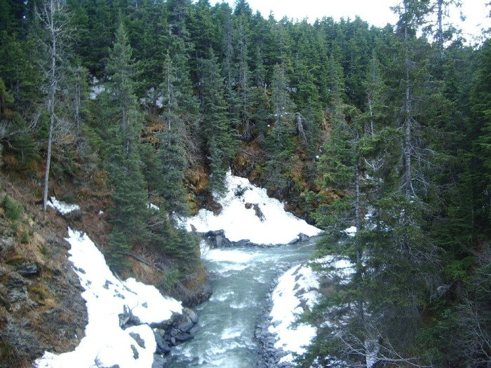 13. Winner Creek Trail