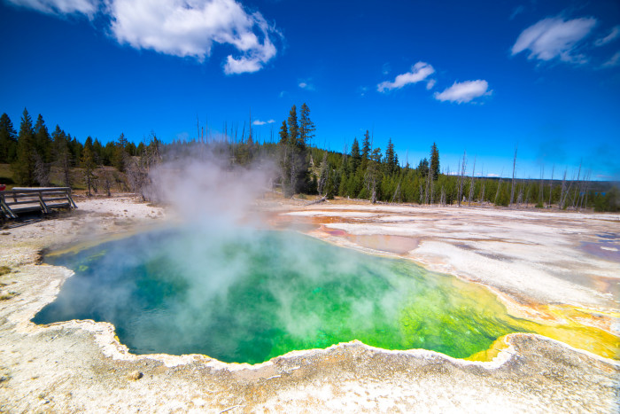 4. Yellowstone National Park, Wyoming. We've all heard of it, but have you been there? It's a must-stop on this road trip.