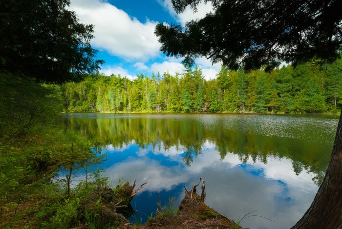 6. Chequamegon-Nicolet National Forest