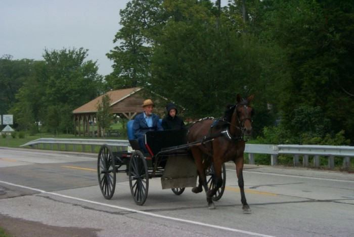 2. The Amish in Arthur are very friendly and quite open about discussing their lifestyle.