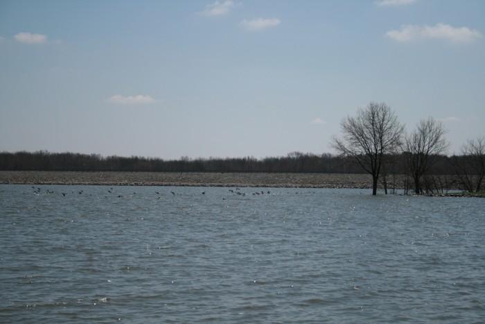 7. Rend Lake