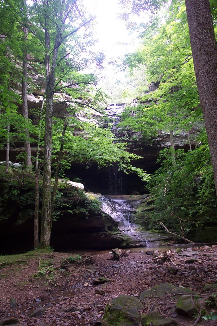 2. The waterfall trail is definitely the most traveled trail.