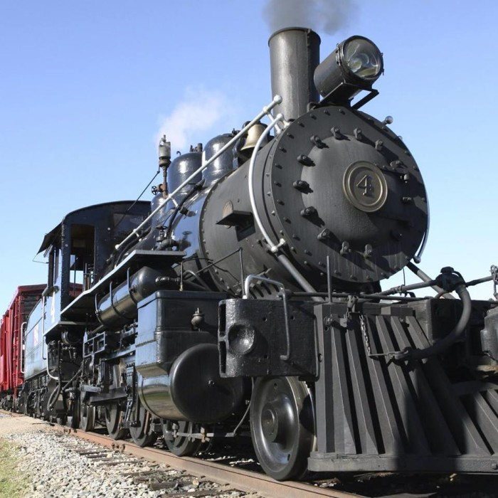 1. Your day begins by hopping on this beautiful lumberjack steam train.