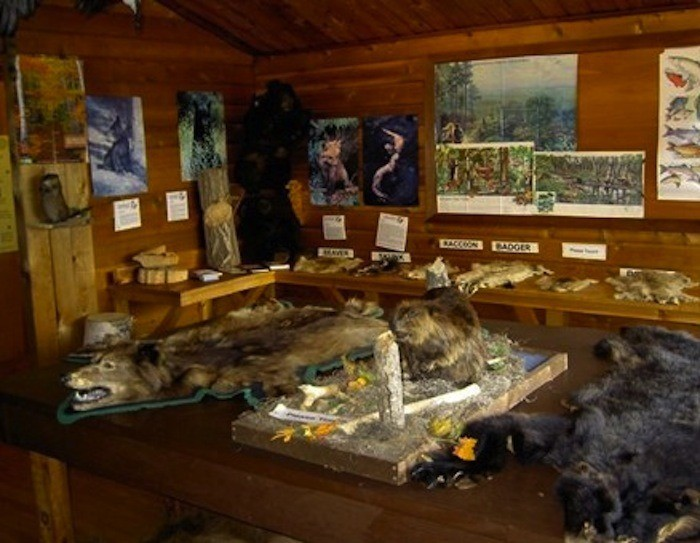 8. There is a place to explore various artifacts, pelts, and furs from this time period.