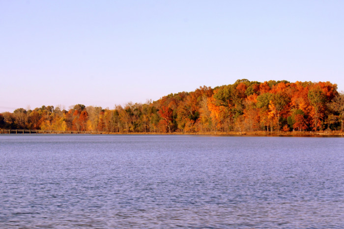 Here we have it - Long Hunter State Park.
