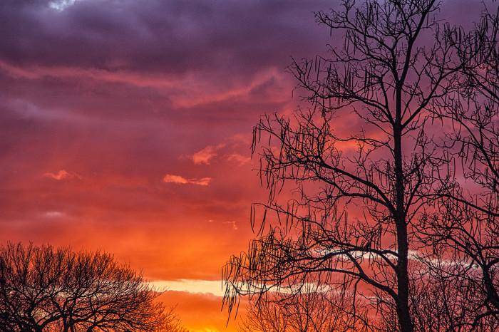 2. The sunrises are more colorful...