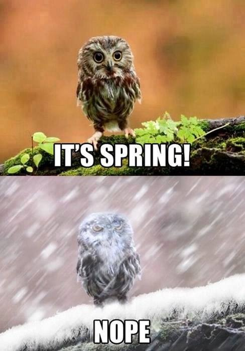 2.) Remember: April showers bring May blizzards.