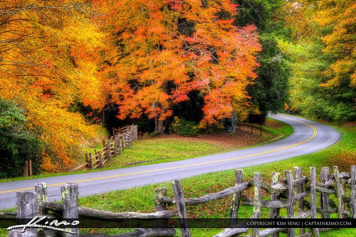 7. Fall in North Carolina.