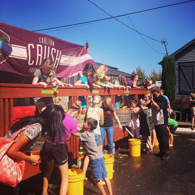 2. Carlton Crush Harvest Festival