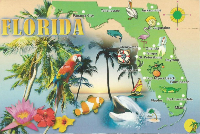 8. A tourist thinks Georgia and Florida should be BFFs simply because of geographical location.
