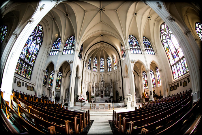 3. The Cathedral Basilica of the Immaculate Conception