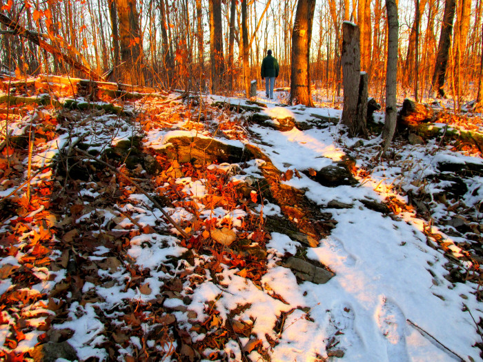 12.  Jackson Trail