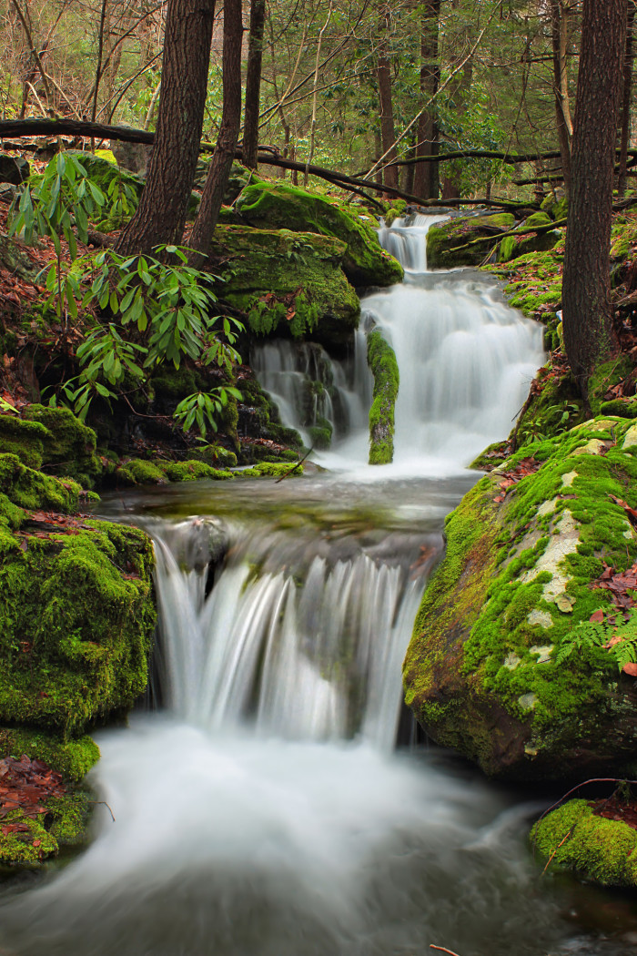 3. Fall Creek