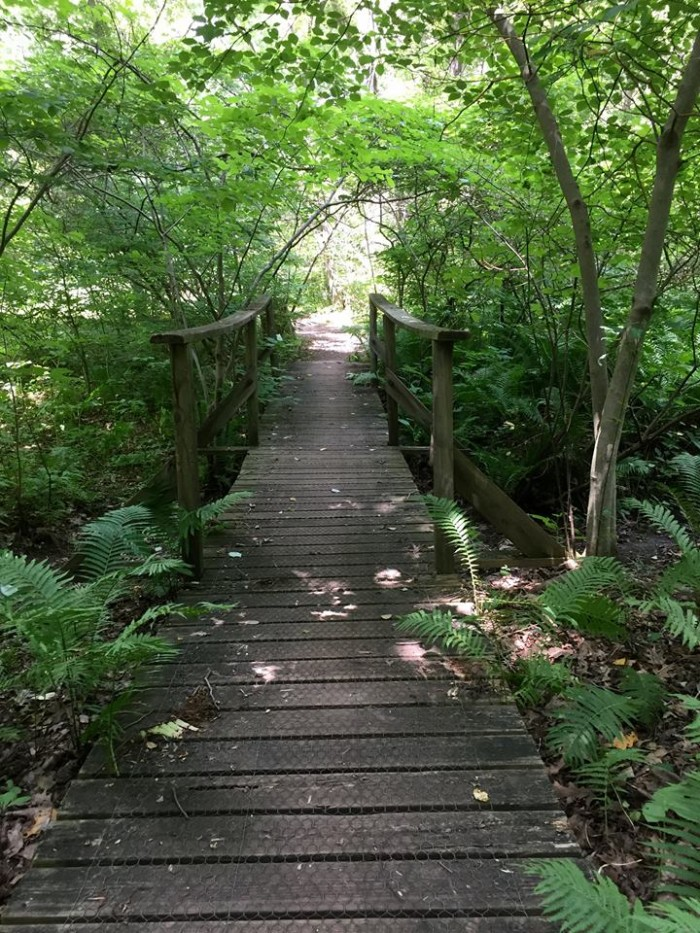 The preserve includes 1,000 plant species that are native to Pennsylvania. There are expansive walking trails here, and it is a destination for bird watchers as well as flower enthusiasts.