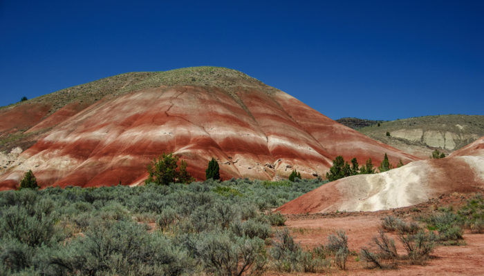 13. The Painted Hills