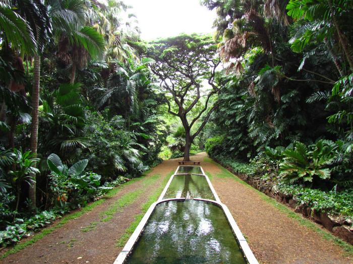 12. Allerton Garden