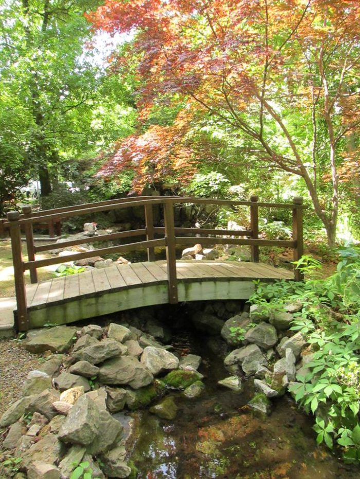 12. Lendonwood Gardens, Grove.