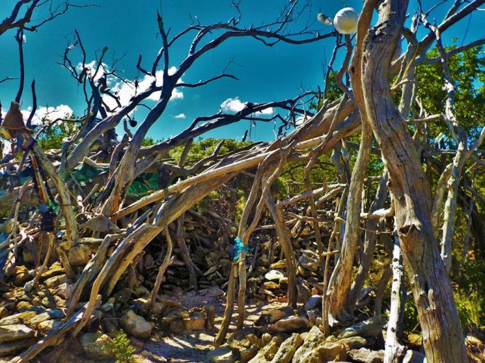 Good stop - Carolines Cafe, Key West Traveller Reviews