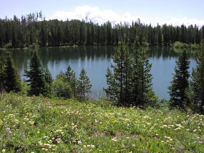 14. Bearpaw Lake