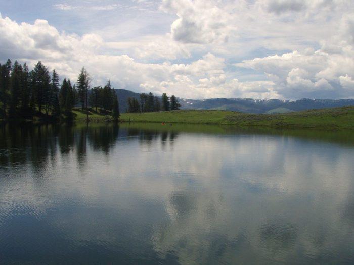1. Trout Lake