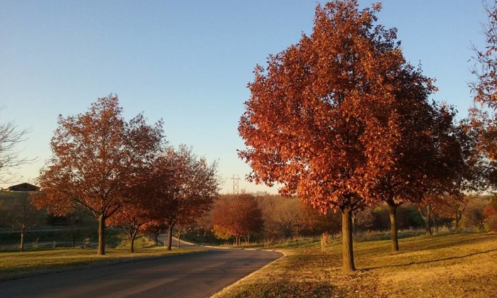8. The incredible colors of fall.