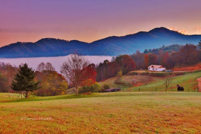 9. A colorful Blue Ridge scene, mountains, pastures, horses...that's the good life.