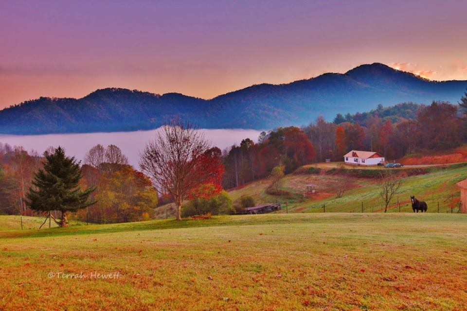 Tell City Indiana >> 14 Charming North Carolina Farms