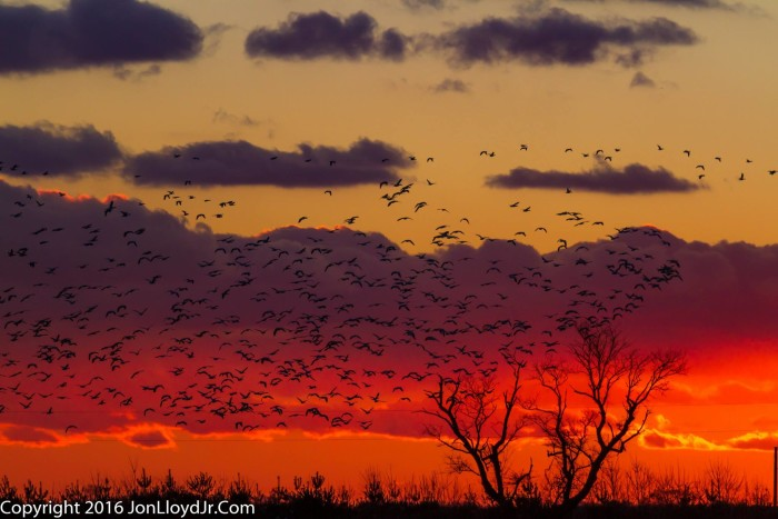 12. The night sky looks like molten lava in this sunset near Smyrna.